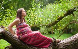 маммография и беременность