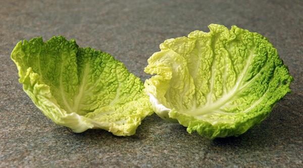 капустный лист при гинекомастии