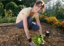 девушка в огороде