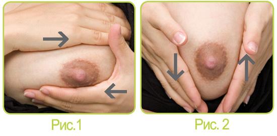 массаж молочной железы